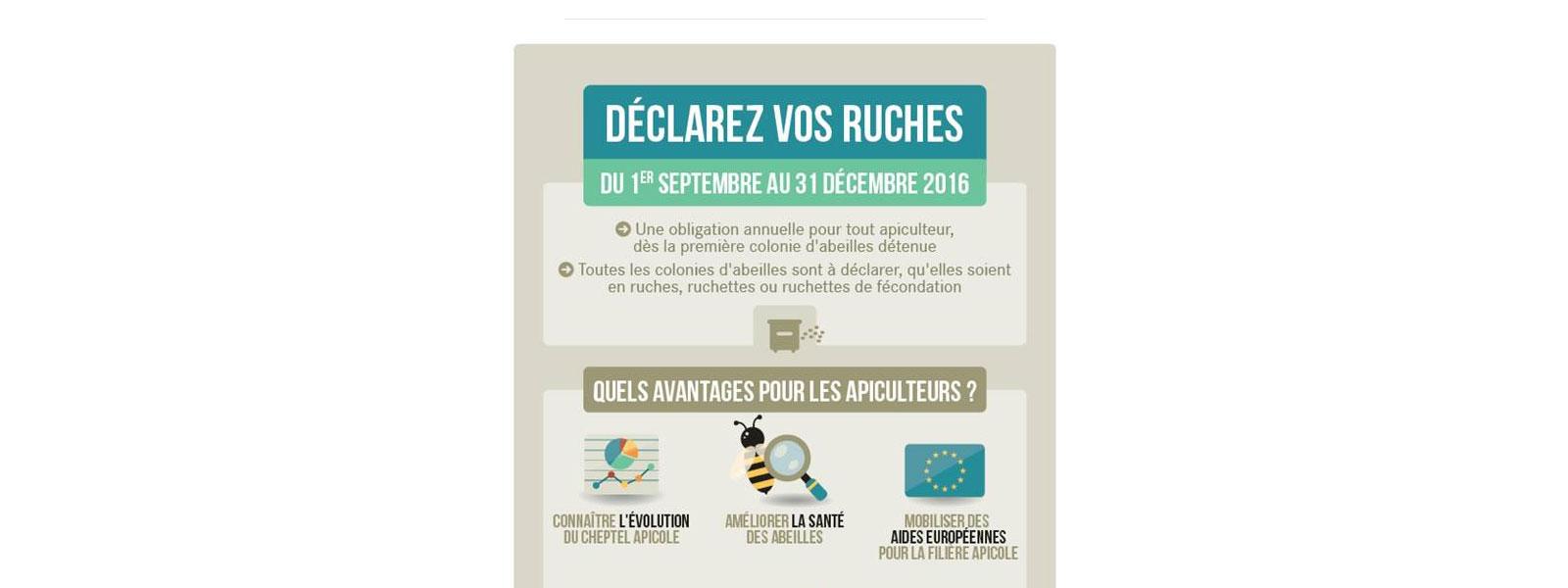Déclaration de ruches 2016 : Du 1er septembre au 31 décembre 2016