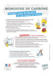 Monoxyde de carbone : première cause de mortalité par gaz toxique en France (document PDF, 316 ko)