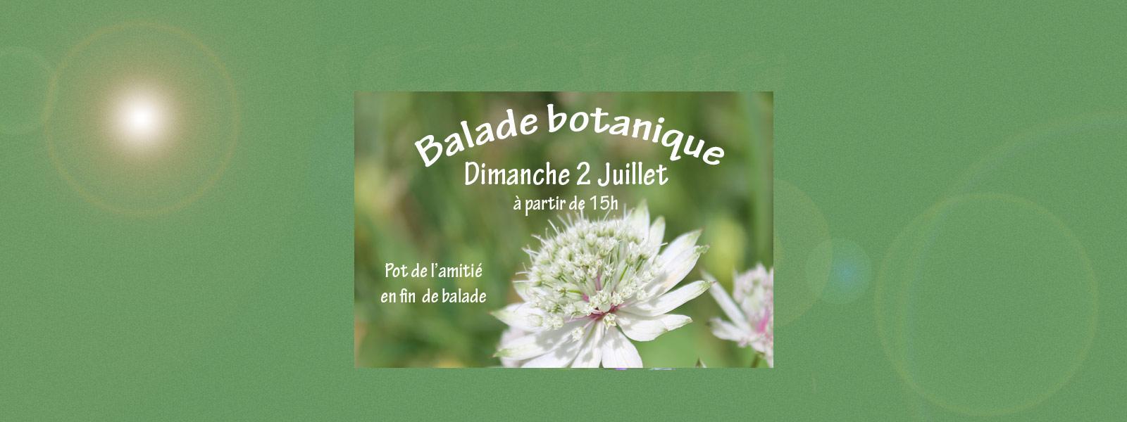 Sortie botanique organisée par Azhure le dimanche 2 juillet