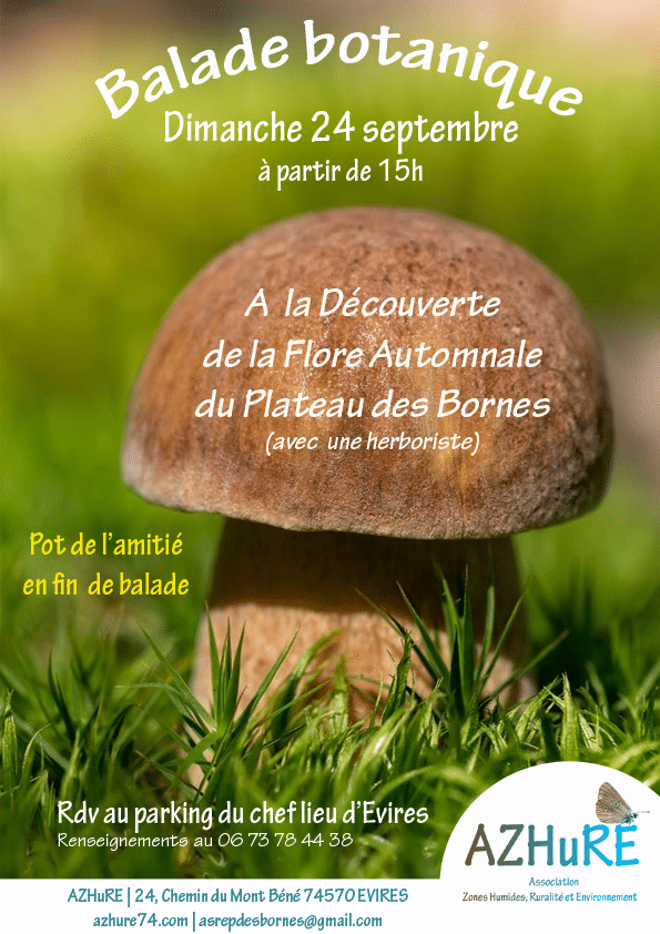 Balade botanique automnale le 24 septembre 2017 à 15h