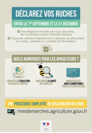 Déclaration de ruches 2017 : du 1er septembre au 31 décembre 2017