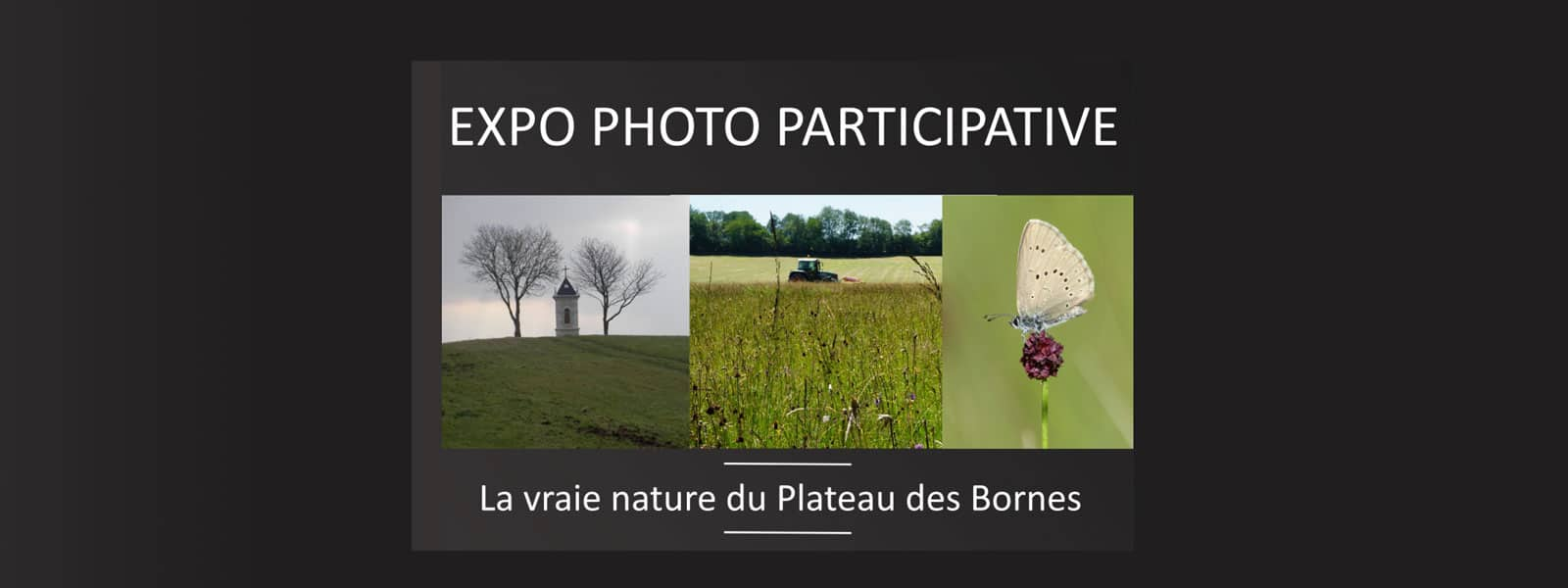 Expo-photo participative « La vraie nature du Plateau des Bornes »