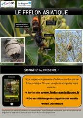 Affiche pour signaler la présence du frelon asiatique